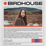 Birdhouse_ainah_v2